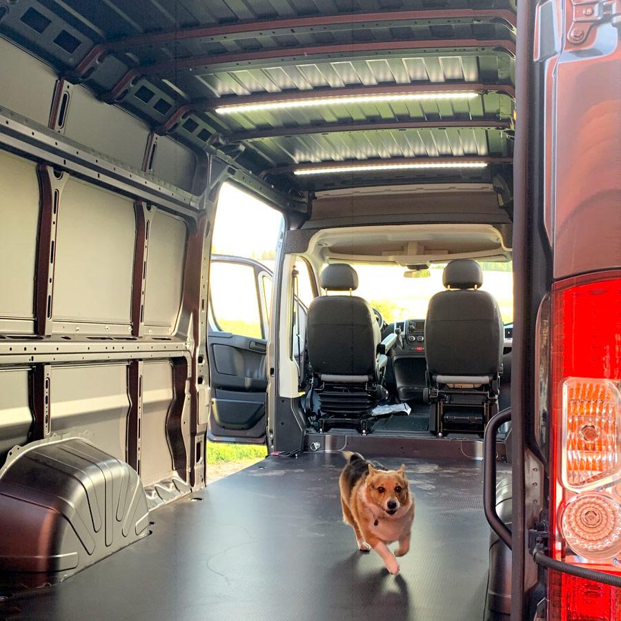 We got a van!